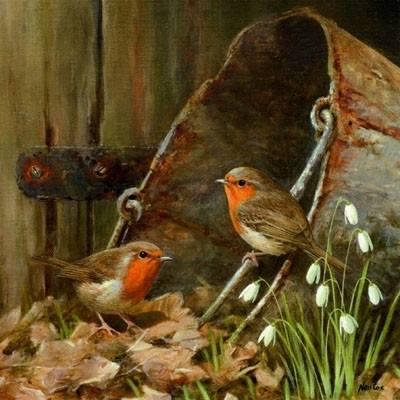 birdsOnbucket