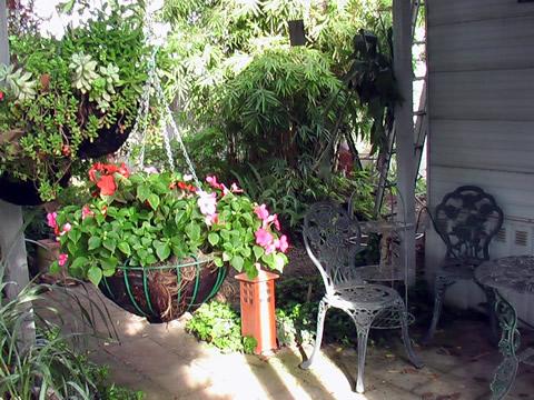 Monday morning patio