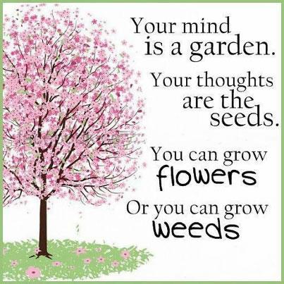 flowersORweeds
