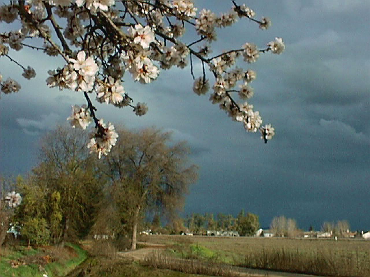 storm-clouds_eld