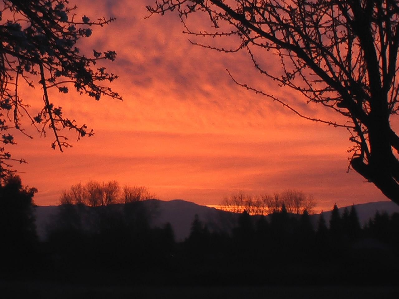 sunrise_eld
