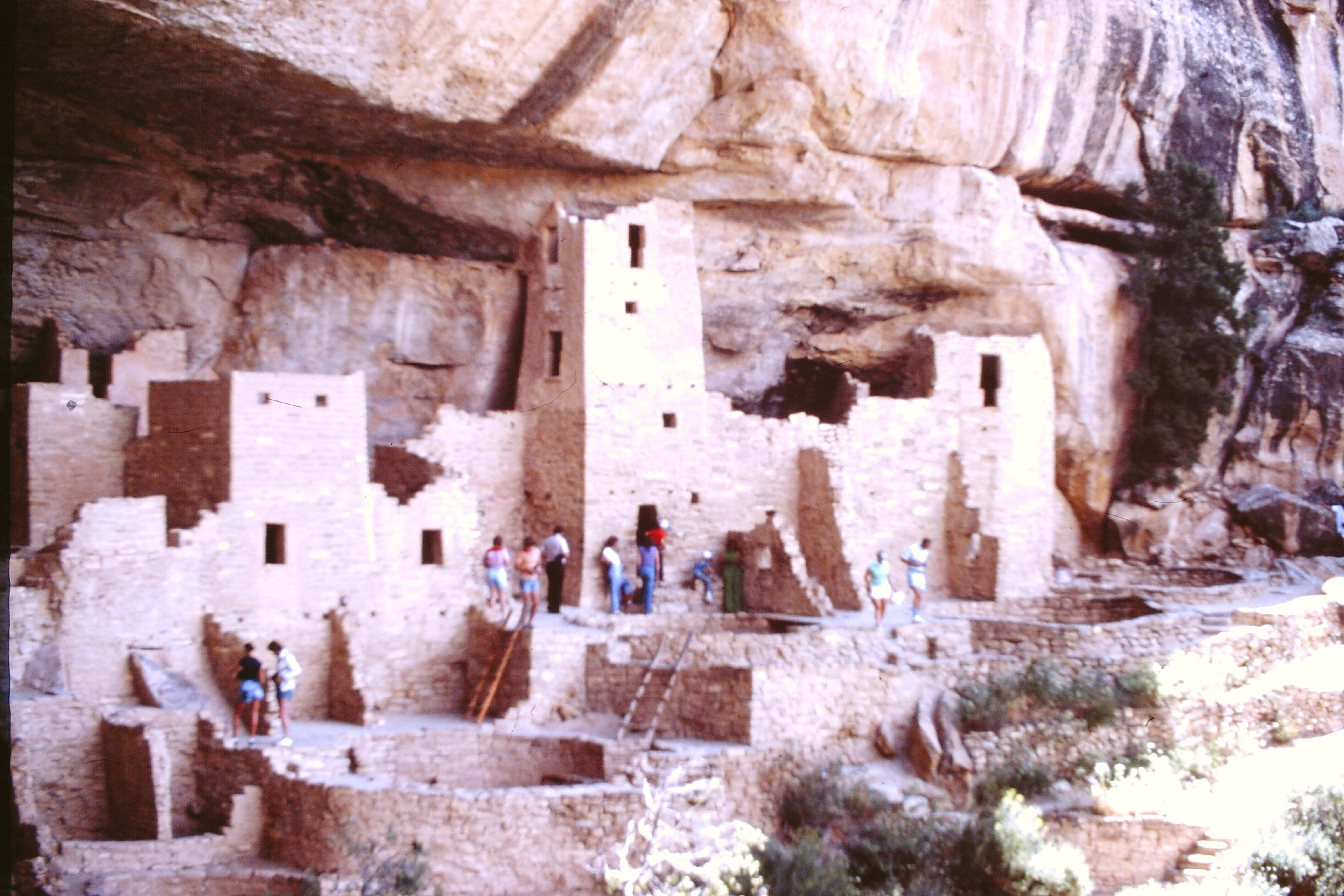 Mesa Verde 1980